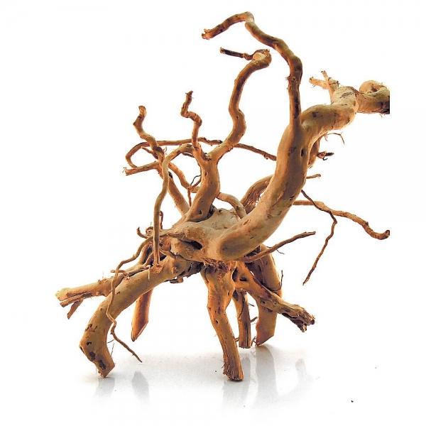 Spiderwood - Gr. S - L
