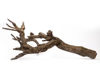 Massiver Woodstamm für Terrarien - 40 cm