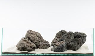 Galapagos Stein - vers. Größen