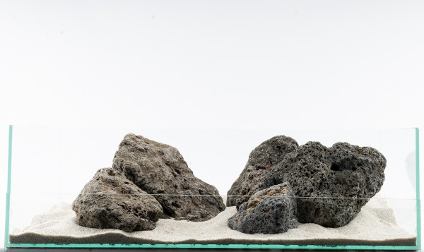 Galapagos Stein - 7-teiliges Set