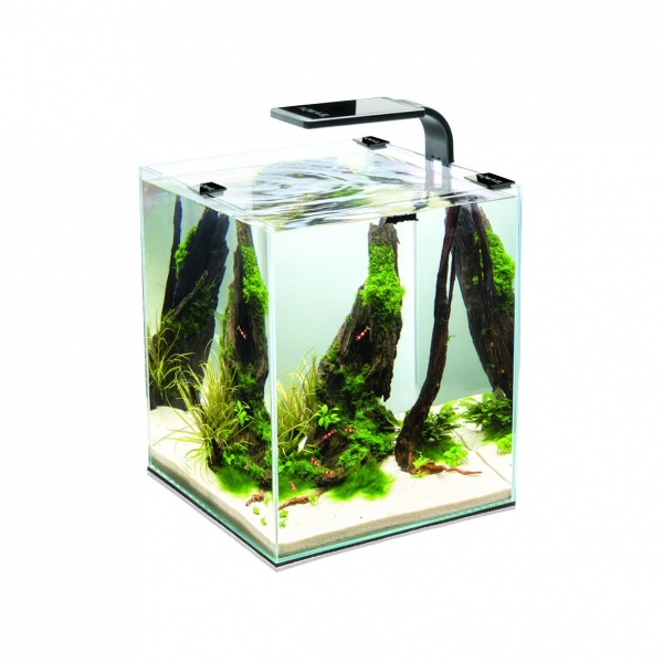 Nano Aquarium - Shrimp Set smart 20L - schwarz