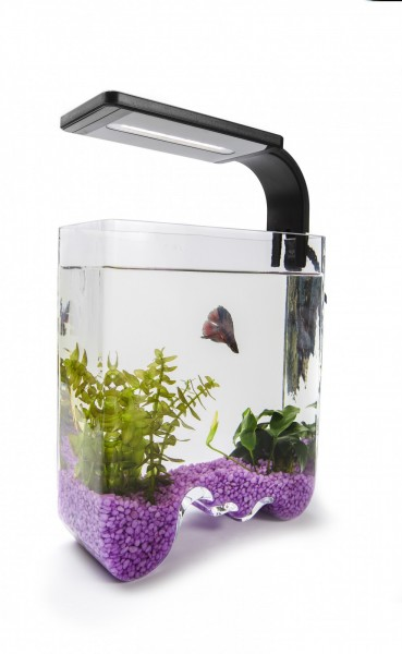 Nano / Schnecken Aquarium - Welle - 3L
