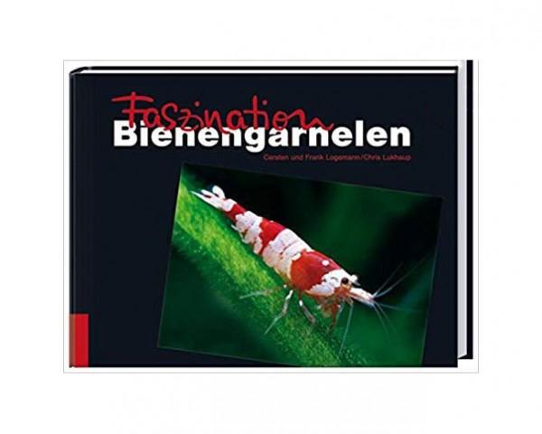 Faszination Bienengarnelen - Logemann/Lukhaup