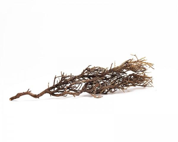 NatureHolic Bushfire - 15-30 cm