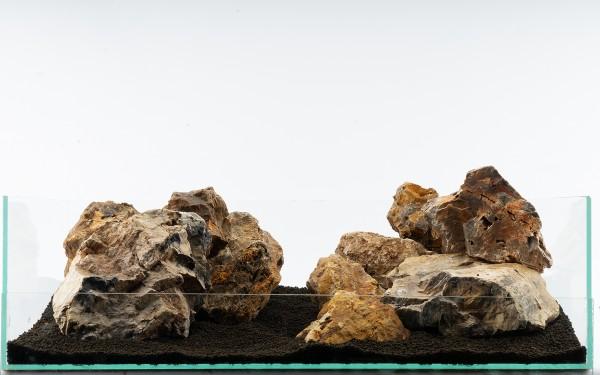 Versteinertes Holz Bunt- vers. Größen