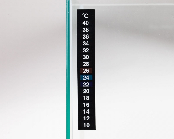 Digital Thermometer zum Aufkleben